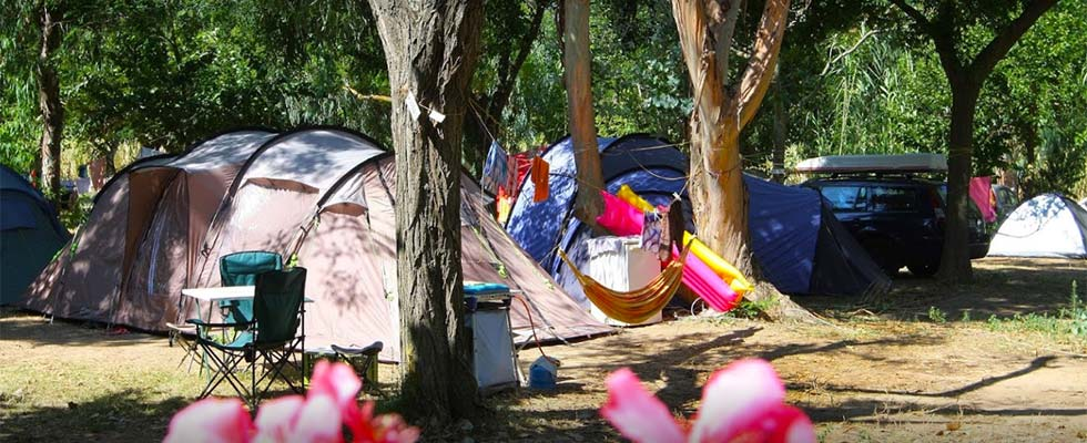 camping ile d'or hyeres