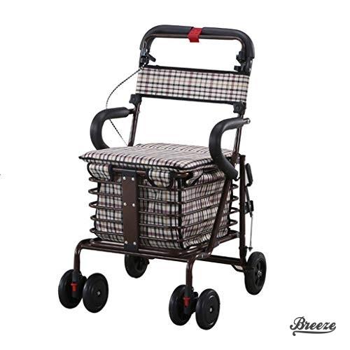 Comment choisir le meilleur chariot de courses?